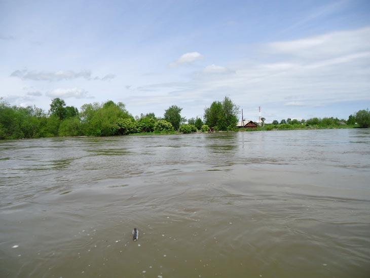 Фото с сайта ГУ МЧС России по Хабаровскому краю