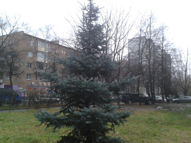 20131111msk
