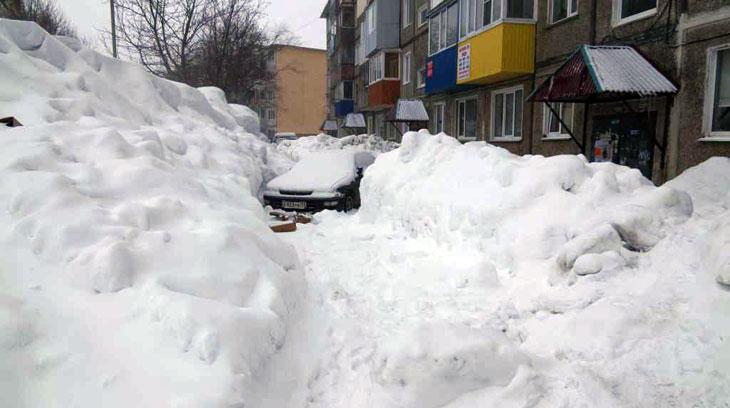 Фото с сайта администрации Петропавловск-Камчатского городского округа