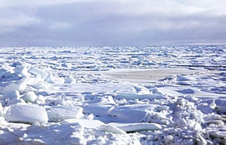 Фото с портала государственных органов Чукотского автономного округа