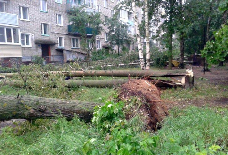 Фото с сайта ГУ МЧС России по Владимирской области
