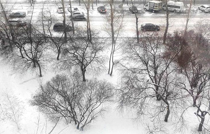 Фото с официального портала Екатеринбурга