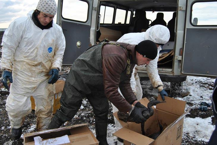 Фото с сайта Губернатора и Правительства Сахалинской области