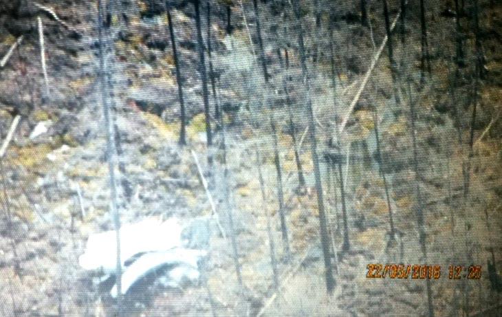 Фото с сайта Министерства охраны природы РС(Я)
