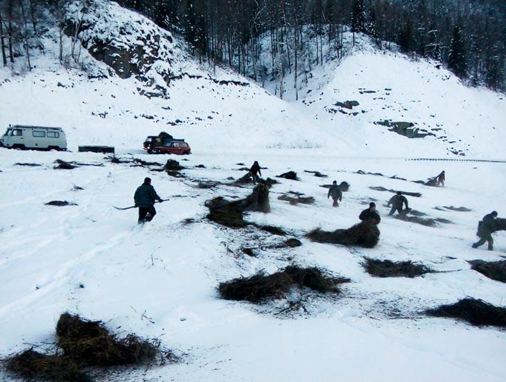 Фото с сайта Комитета по охране, использованию и воспроизводству животного мира Республики Алтай